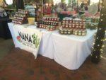 NaNa's Salsa & Cactus Jelly logo